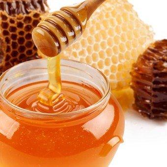 miel-abeja-quito